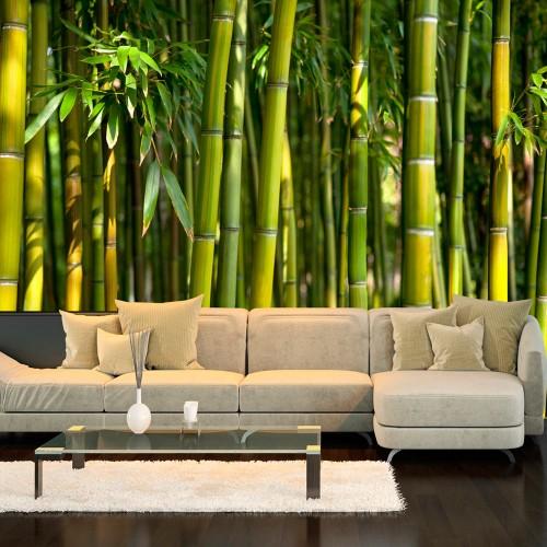 Fotomurale - Oriental Garden - Quadri e decorazioni