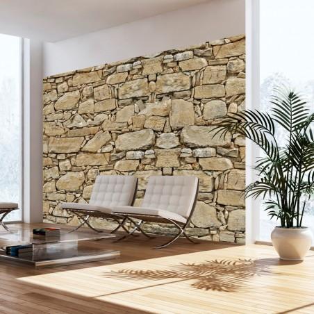 Fotomurale - Muro di pietra - Quadri e decorazioni