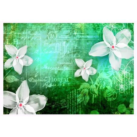Fotomurale - Floral notes III - Quadri e decorazioni