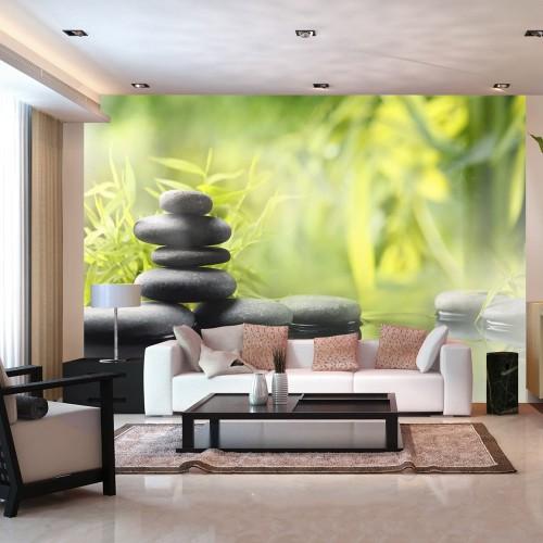 Fotomurale - Tranquillità della natura - Quadri e decorazioni