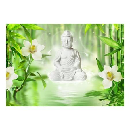 Fotomurale - Buddha e natura - Quadri e decorazioni