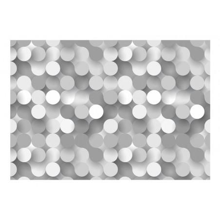 Fotomurale - Silver Net - Quadri e decorazioni