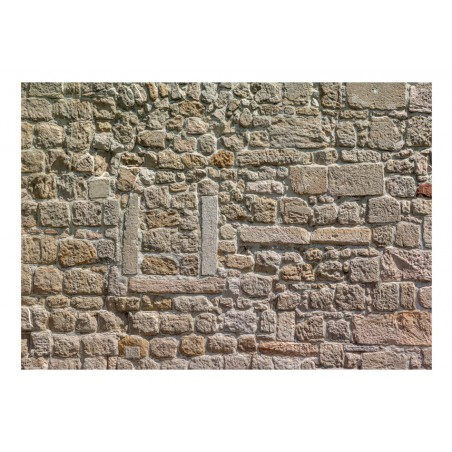 Fotomurale - Wall From Stones - Quadri e decorazioni