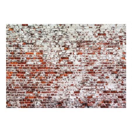 Fotomurale - Her Highness The Brick - Quadri e decorazioni