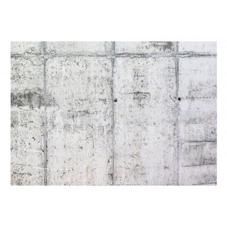 Fotomurale - Concrete Wall - Quadri e decorazioni