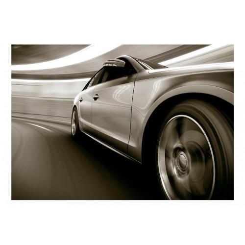 Fotomurale - Speed and Elegance - Quadri e decorazioni