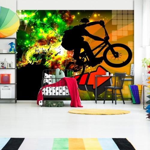 Fotomurale - Bicycle Tricks - Quadri e decorazioni