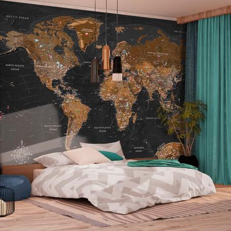 Fotomurale - World: Stylish Map - Quadri e decorazioni