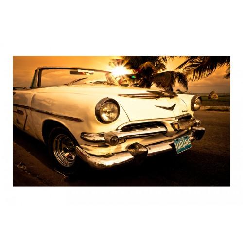 Fotomurale - Viva Havana! - Quadri e decorazioni
