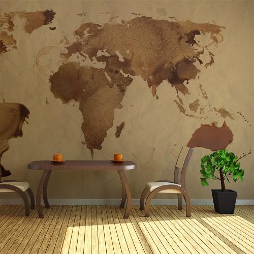 Fotomurale - Mappa del mondo color tè - Quadri e decorazioni