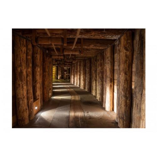 Fotomurale - Wooden passage - Quadri e decorazioni