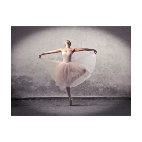 Fotomurale - Danza classica - poesia senza parole - Quadri e decorazioni
