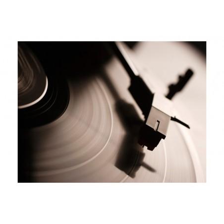 Fotomurale - Giradischi e disco vinile - Quadri e decorazioni