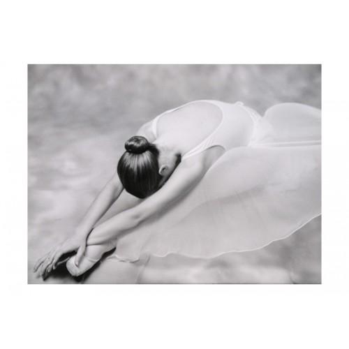 Fotomurale - fotografia: ballerina - Quadri e decorazioni