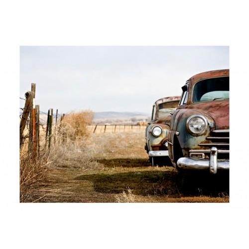 Fotomurale - Due macchine americane vecchie - Quadri e decorazioni