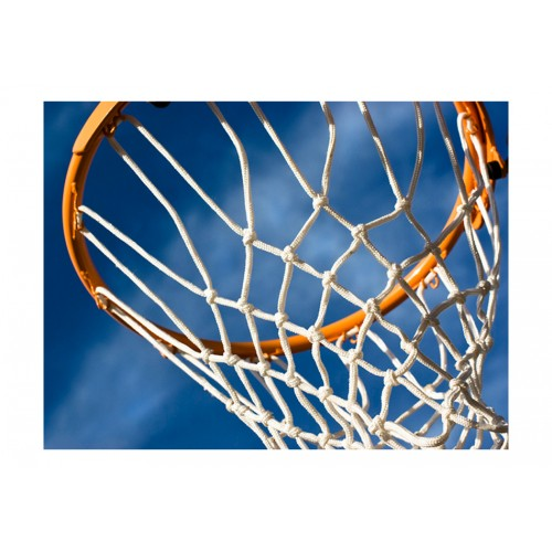 Fotomurale - sport - pallacanestro - Quadri e decorazioni