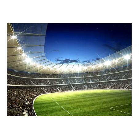 Fotomurale - Stadio nazionale - Quadri e decorazioni
