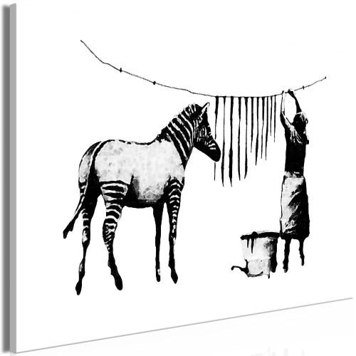 Quadro - Banksy: Washing Zebra (1 Part) Wide - Quadri e decorazioni