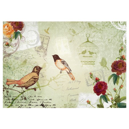Fotomurale - Vintage birds - Quadri e decorazioni
