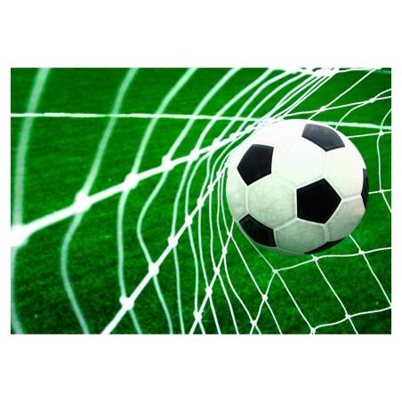 Fotomurale - Goal! - Quadri e decorazioni