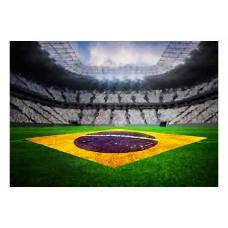 Fotomurale - Stadio brasiliano - Quadri e decorazioni