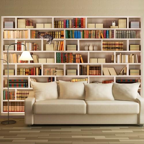 Fotomurale - Biblioteca di casa - Quadri e decorazioni