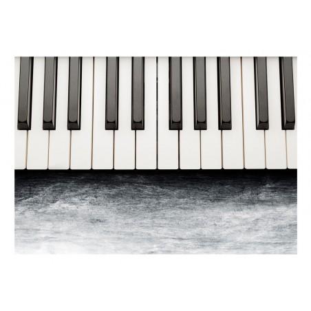 Fotomurale - Ispirati a Chopin - pietra grigia - Quadri e decorazioni