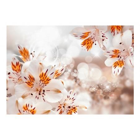 Fotomurale - Lily of the Incas - Quadri e decorazioni