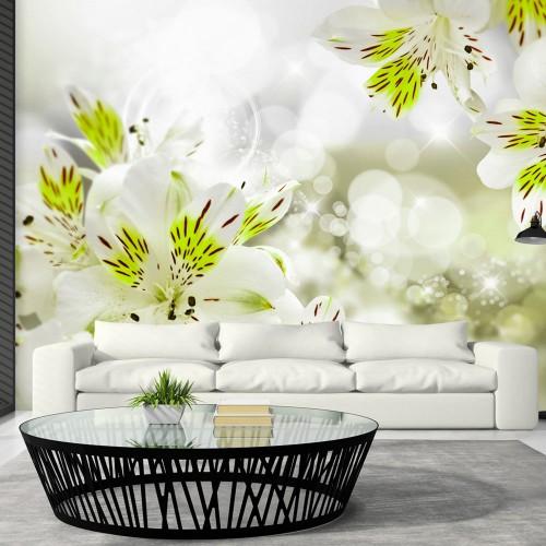 Fotomurale - Southern Princess - Quadri e decorazioni