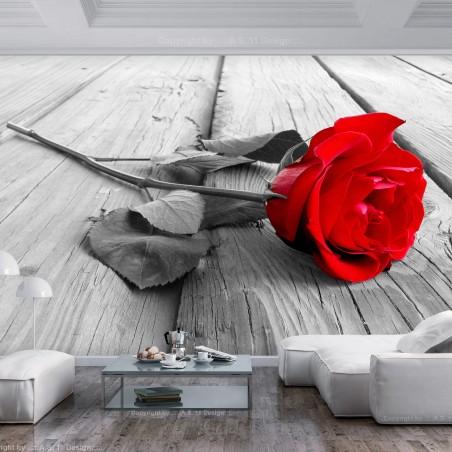 Fotomurale - Abandoned Rose - Quadri e decorazioni