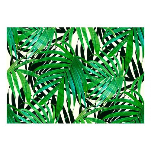 Fotomurale - Tropical Leaves - Quadri e decorazioni