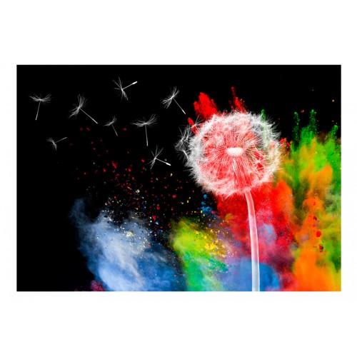 Fotomurale - Colourful Element - Quadri e decorazioni