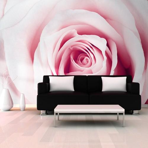 Fotomurale - Rose maze - Quadri e decorazioni
