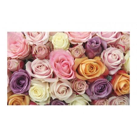 Fotomurale - Rose pastello - Quadri e decorazioni