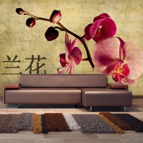 Fotomurale - Japanese orchid - Quadri e decorazioni