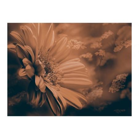 Fotomurale - Gerbera in marrone - Quadri e decorazioni