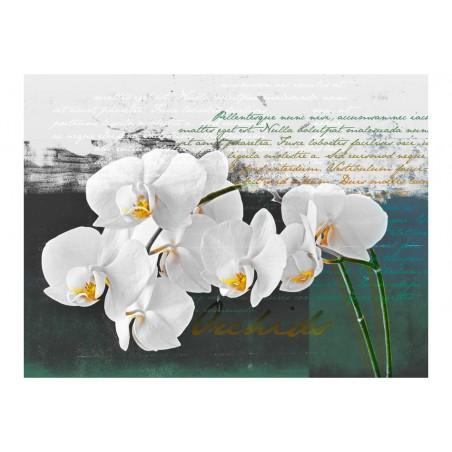 Fotomurale - Orchidea: ispirazione del poeta - Quadri e decorazioni