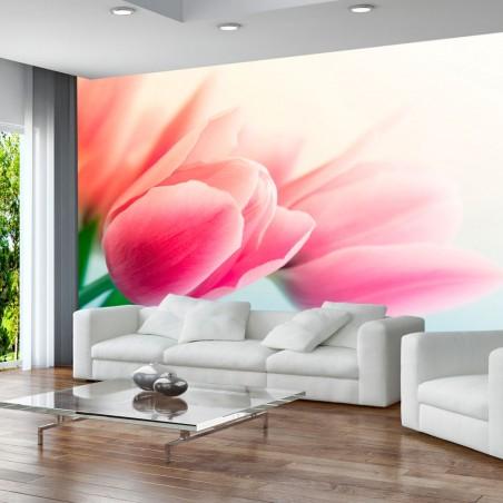Fotomurale - Primavera e tulipani - Quadri e decorazioni