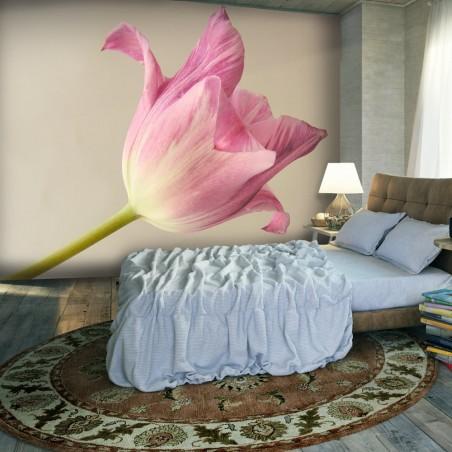 Fotomurale - Pink tulip - Quadri e decorazioni