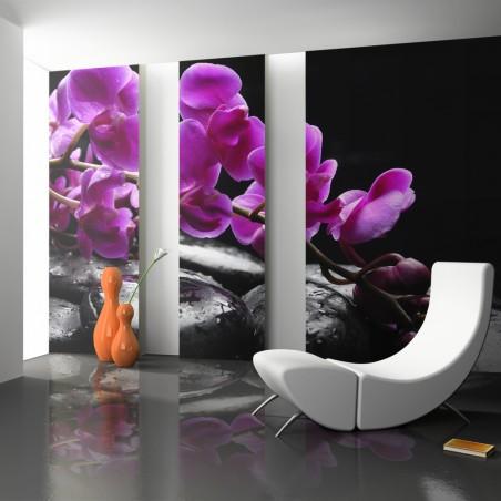 Fotomurale - Momento di relax: un'orchidea e pietre zen - Quadri e decorazioni