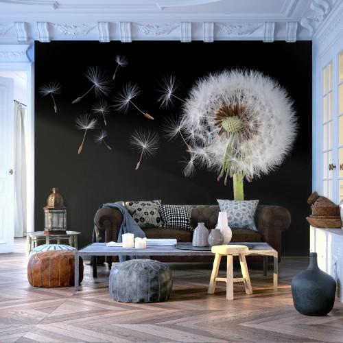 Fotomurale - Vento e soffione - Quadri e decorazioni