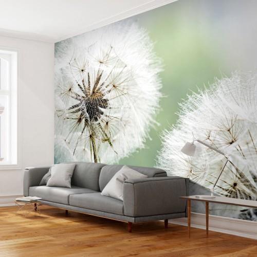 Fotomurale - Due soffioni - Quadri e decorazioni