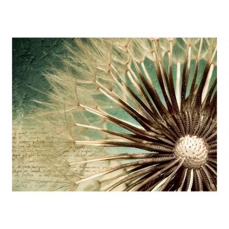 Fotomurale - Focus on dandelion - Quadri e decorazioni