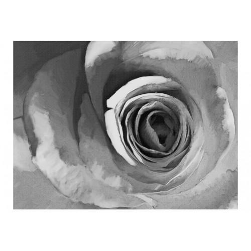 Fotomurale - Rosa cartacea - Quadri e decorazioni