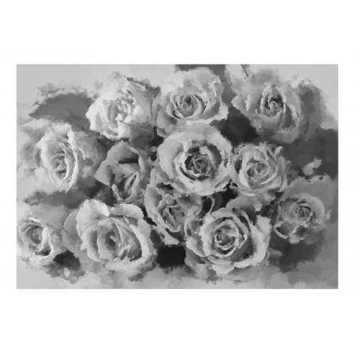 Fotomurale - A dozen roses - Quadri e decorazioni