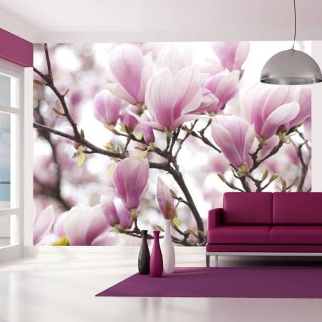 Fotomurale - Rami di magnolia in fiore - Quadri e decorazioni