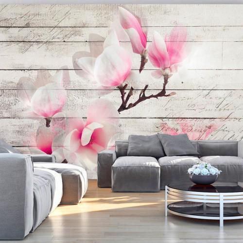Fotomurale - Delicatezza della magnolia - Quadri e decorazioni