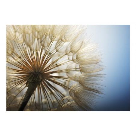 Fotomurale - Summer Delight - Quadri e decorazioni