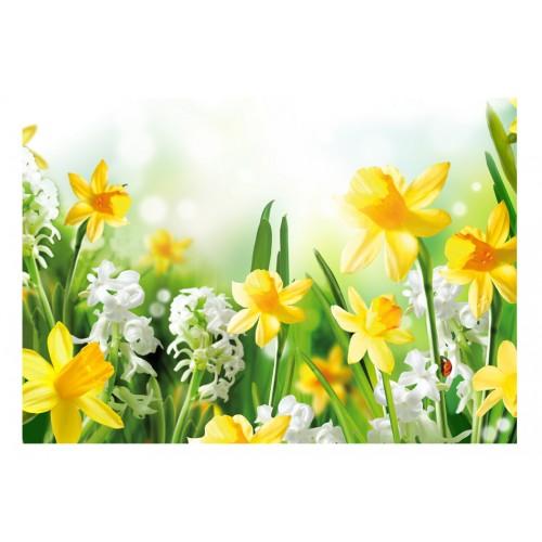 Fotomurale - Passeggiata in primavera - Quadri e decorazioni
