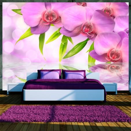 Fotomurale - Orchidee color lillà - Quadri e decorazioni